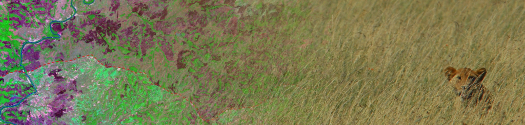 resized_earth-observation_org_WegmannBevanda_gradient_lionseronera_RS
