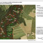 WebDemo-Bestandsabgrenzg-Oberhoehe-top100trees-rgb