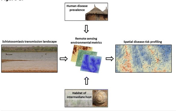 new publication: Risk profiling of schistosomiasis using remote sensing: approaches, challenges and outlook
