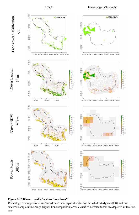 msc thesis in gis and remote sensing