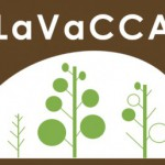 LaVaCCA Introductory GIS / R course in Almaty, Kazakhstan