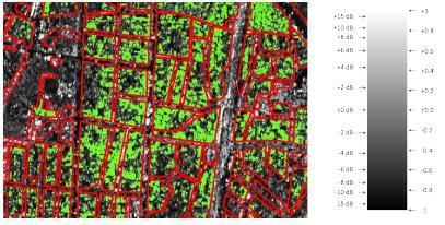 MSc handed in: SAR for urban area characterization