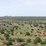 Sudanian Savanna