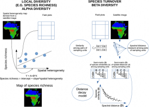 new article on species diversity monitoring with remote sensing