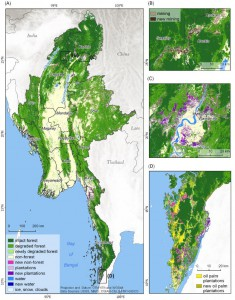 MSc by Andrea Hess on deforestation drivers in Myanmar handed in
