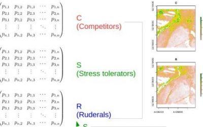 new publication: Remotely sensed spatial heterogeneity