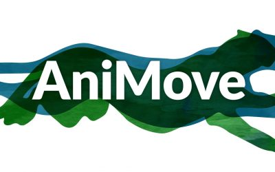application deadline for AniMove summer school is approaching
