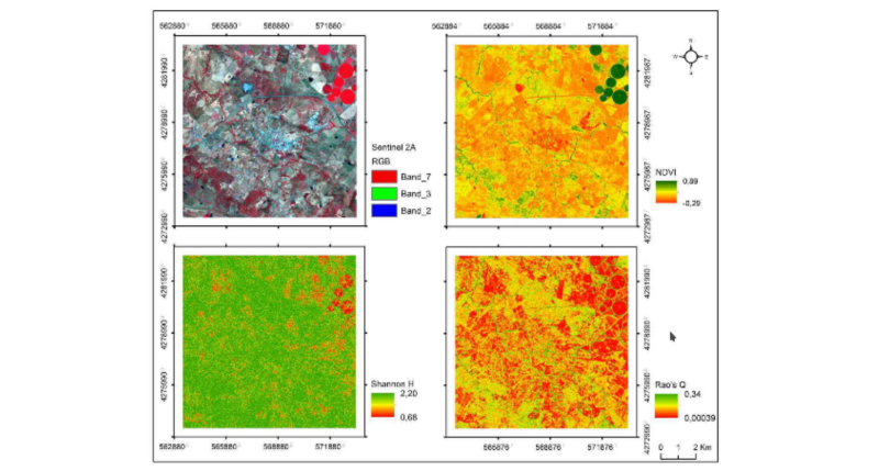 new article: Measuring β-diversity by remote sensing: a challenge for biodiversity monitoring