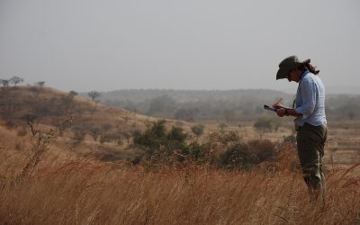 Open position on agricultural monitoring in West Africa (TV-L 13 50%)